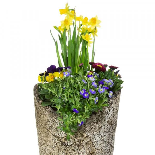 Pflanzkuebel mit Pflanzen bepflanzt