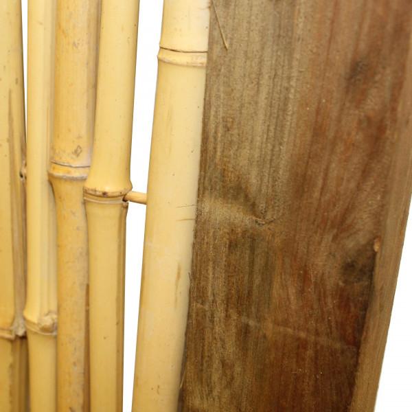 bambus als sichtschutz günstig