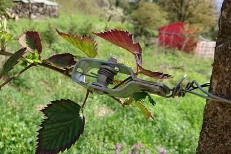 Neu Maschendrahtzaun günstig bestellen ✓ Draht-Driller WB63