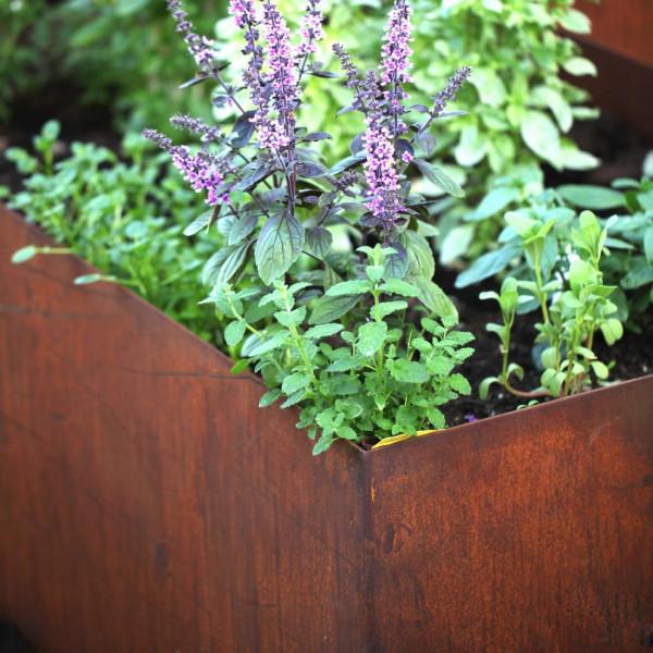 Hochbeet Edelrost Gartengestaltung erfahrung