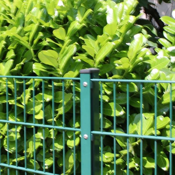 Zaunset Doppelstabmatte grün
