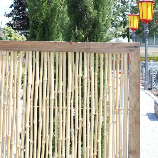 bambus als sichtschutz für terrasse