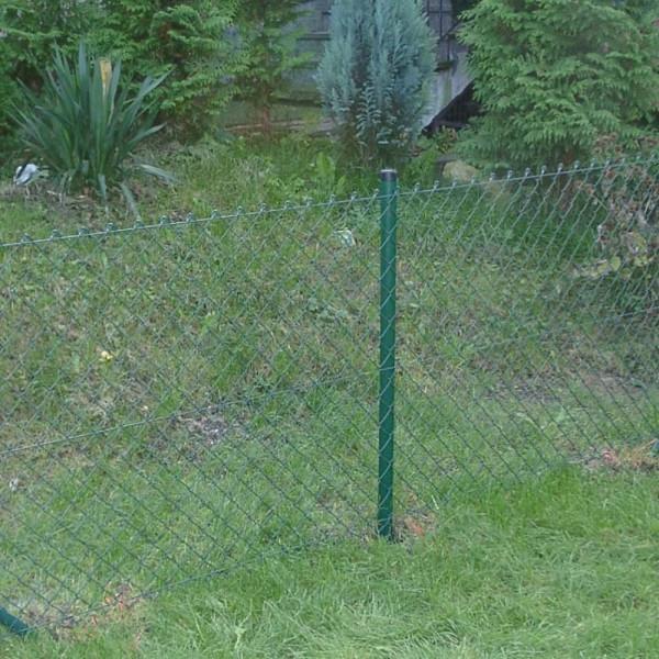 Zaun Draht in grün 200 cm im Set
