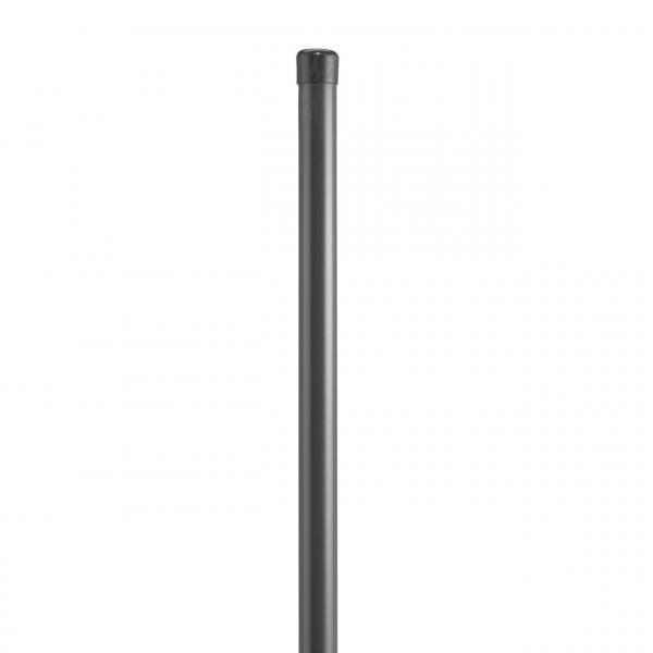 DINO Höhe 1000 mm, Pfosten Ø 34x1500 mm anthrazit