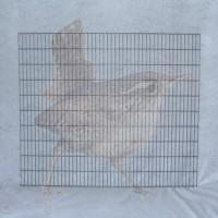 Columella Gitter 1778 x 1005 mm