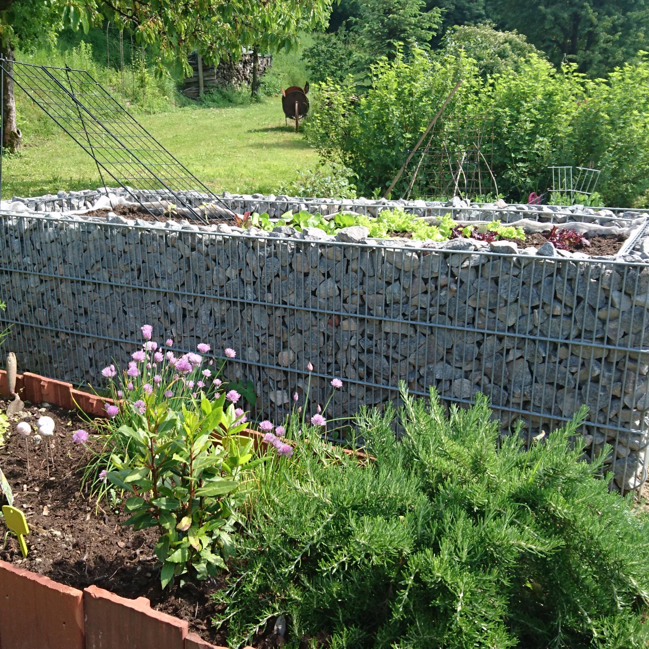 Gabionen Körbe Günstige Preise Gartengestaltung Gabionenbau