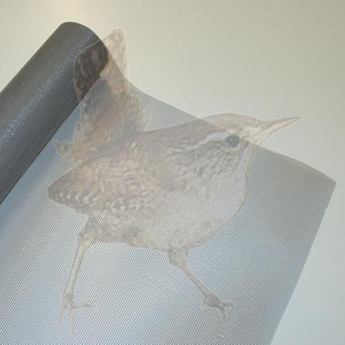 Fliegengitter Fiberglas grau