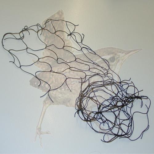 Abwehrnetz Tauben schwarz w