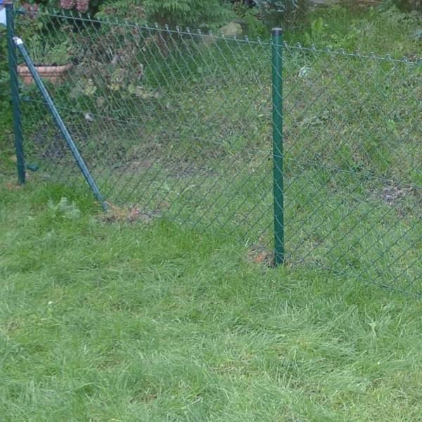 Zaun Draht grün als Komplettset 200 cm