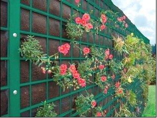 Lrmschutz Windschutz Pflanzwand Green Wall Lrmschutzwand