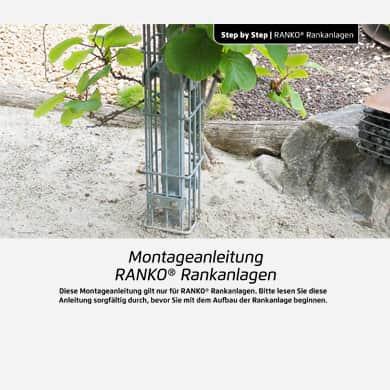 Ranko das Rankgerüst. Rankgitter für Kletterpflanzen.